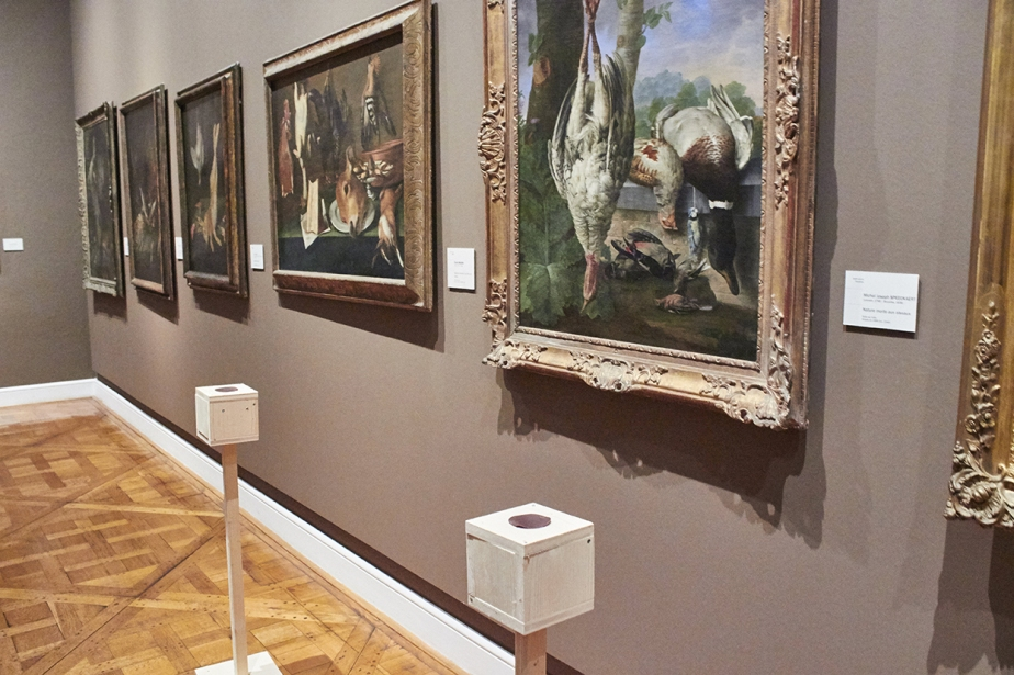 20180519Nuit des musée web CHIRON musée des beaux arts strasbourg004
